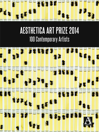Aesthetica Art Prize 2014